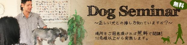 船橋市 犬 ドッグキャンプ 無料セミナー