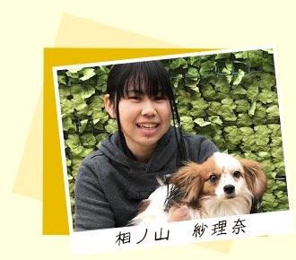 犬の保育園,一時預かり,ペットホテル,しつけ,トレーニング:ドッグトレーナー相ノ山紗理奈