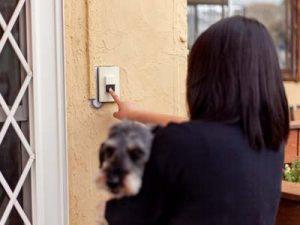 犬の保育園,一時預かり,ペットホテル,しつけ,トレーニング:ご来店の際には呼び鈴を